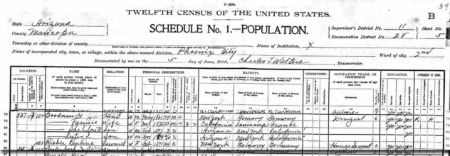 fannie-goodman-1900-census